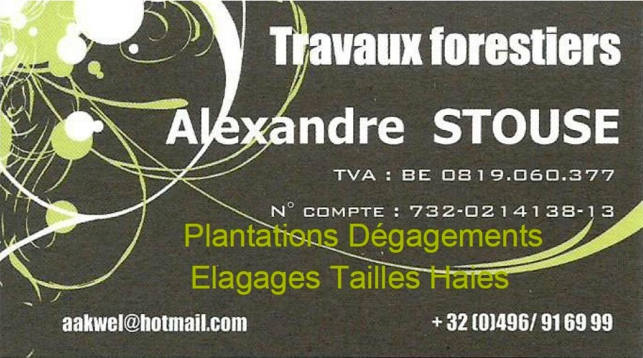 Travaux forestiers Alexandre Stouse